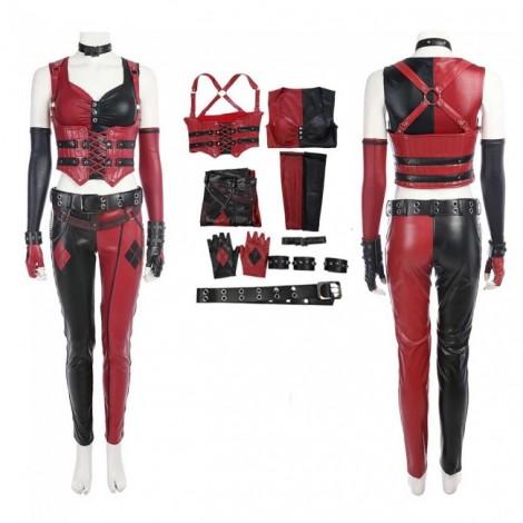 Batman Arkham City Harley Quinn Cosplay Costume